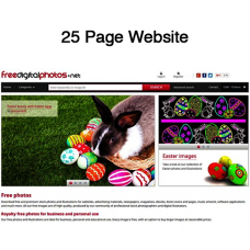 25 Pages Website